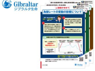 ジブラルタ生命保険株式会社 パンフレット3種